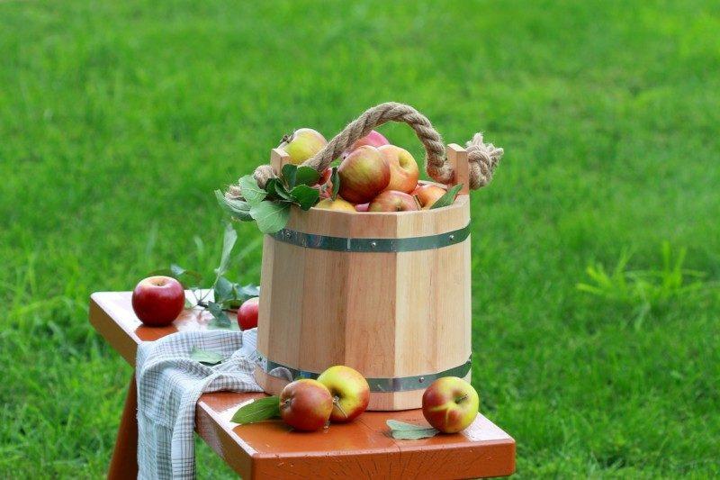Я́блочный Спа́с — день в народном календаре славян, приходящийся на 19 августа.  Являлся одним из первых праздников урожая. По народным приметам, Яблочный Спас означает наступление осени и преображение природы. У восточных славян только с Яблочного Спаса позволялось есть яблоки и яство из плодов нового урожая.  Представляем Вашему вниманию рецепты блюд из яблок.  Кушайте яблочки наливные, будьте здоровыми и молодыми! Яблочками угощайтесь, кушайте, не стесняйтесь!